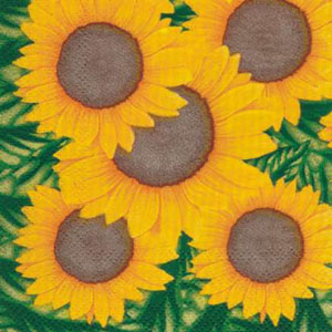 Dinus Sunflower Napkins